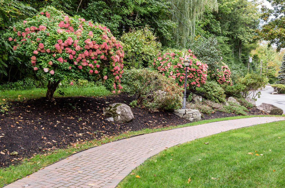 Spectacular landscaping throughout the grounds at Parkwood Apartments